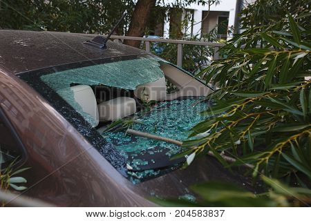 Damage close up and broken glass. Large diver fell on the car during a hurricane Accident and property insurance.