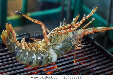 Grill Lobster
