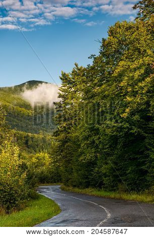winding road through forest in mountains. lovely transportation scenery in autumnal countryside morning