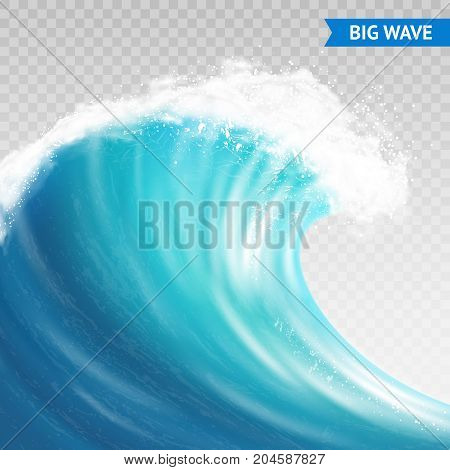 Big sea or ocean wave with spray, foam on crest and reflection on transparent background vector illustration