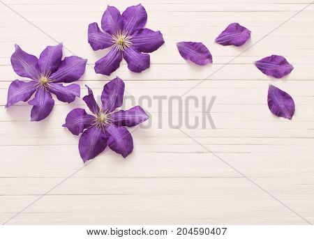 the wooden white background with purple clematis