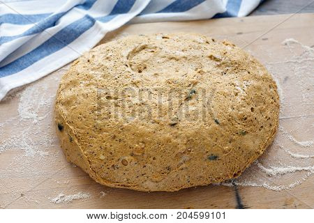 Sour Dough For Pumpkin Bread.