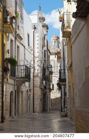 Characteristic alleyway of Rutigliano. Puglia. Southern Italy.