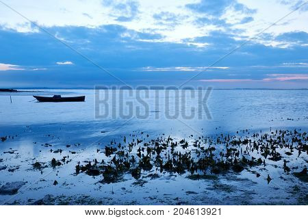 Beautiful seascape with a docked boat photographed at dawn in the Camargue