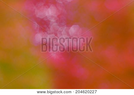The Beautiful Of Colorful Blurred  Hexagon And Light Background