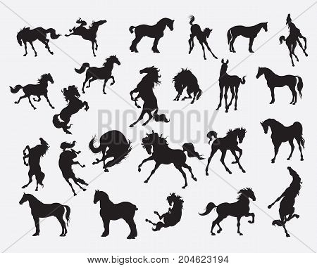 Horse Silhouette Collection - Horse stance Illustration.