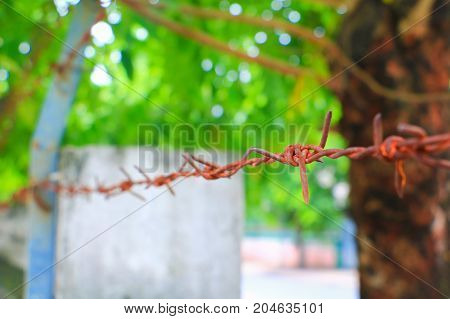 rusty barbed wire concept soldier safety in bunker. Select focus with shallow depth of field