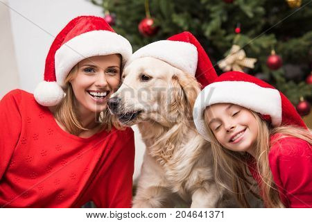 Mother, Daughter And Dog In Santa Hats