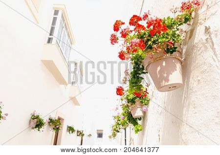 Andalusian Decorative Plantpots With Red An Pink Geraniums Hanging On The Walls Of The Street