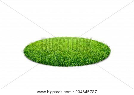 Illustration of grass circle isolated on white background