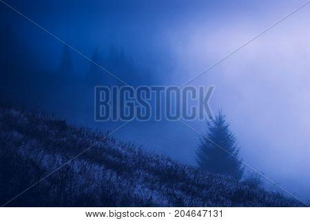 Carpathian Misty Valley At Night