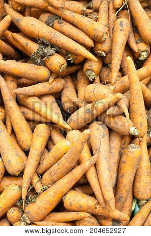 Carrots background texture of Carrots , seasoning Carrots , Carrots for sale,