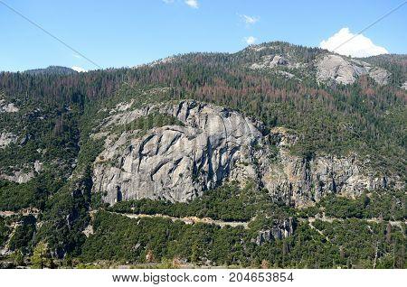 Mountain Landscape In Yosemite National Park, California, Usa