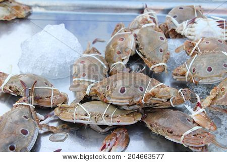 Fresh crab for cooking in the market