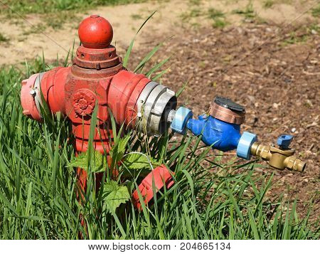 Old red fire hydrant in the grass