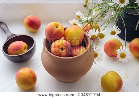Nectarines are scattered on the windowsill near a vase with field daisies ceramic pot and wooden spoon Early autumn