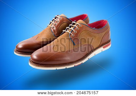 Male Brown Leather Shoe on Background, Isolated Product.