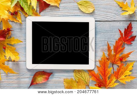 Autumn colorful maple leaves framing tablet with empty screen for copy space on rustic wood background. Seasonal fall sales mockup, top view