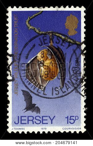JERSEY - CIRCA 1979: A stamp printed in Great Britain shows rodrigues flying fox or rodrigues fruit bat, (Pteropus rodricensis), circa 1979