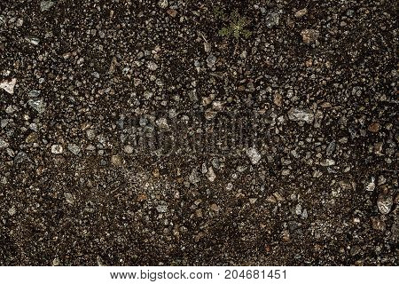 Sandy soil. Sandy soil background. Sandy earth. Grunge background. Brown background.