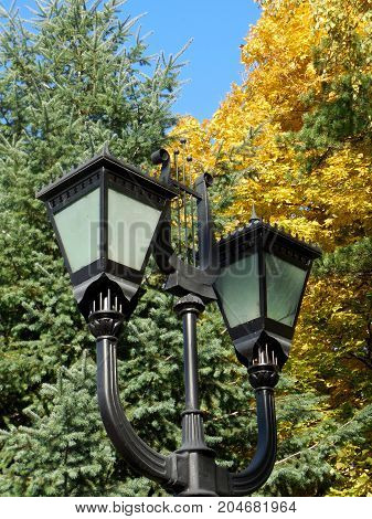 Beautiful street lamps on the background of autumn yellow leaves and green branches of a spruce