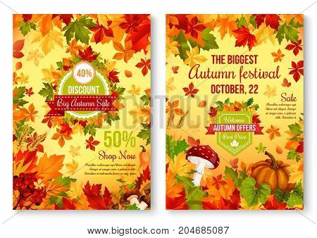 Autumn sale seasonal discount promo poster for shopping festival price off. Vector design of maple and birch leaf, pumpkin and rowan berry harvest, mushroom amanita or chanterelle and oak acorn