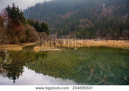 Lakes near the hill of a mountain covered with forest. View of the bottom of the lake through clear water with old tree. View of the mountains from the lake. JiuZhaiGou, China, Asia.