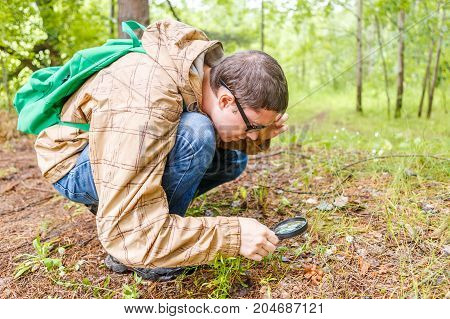 Photo of man with amagnifying glass examining plants in forest during day
