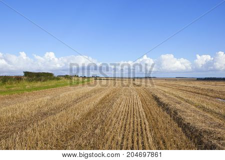 Autumn Bridleway And Stubble Field
