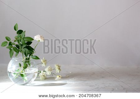 Artistic photo of beautiful rose in a vase on a marble table. Natural light.Beautiful flowers in glass vases on a table and gray wall background