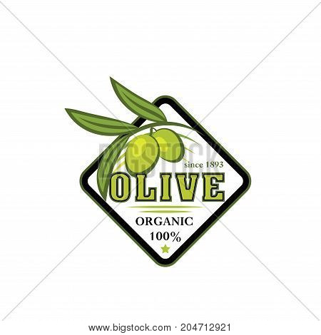 Green olive branch isolated icon. Natural organic olive fruit with leaf and tree branch for olive product symbol, extra virgin oil bottle label and mediterranean food themes design