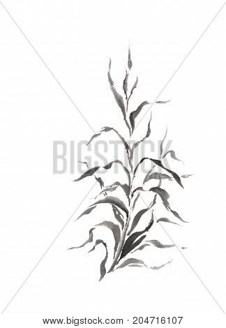 Japanese style sumi-e dracaena sprout painting. Great for greeting cards or texture design.