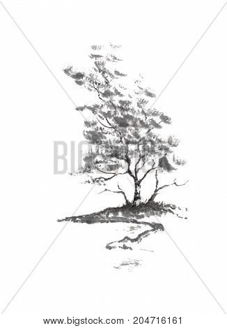 Birch tree on river bank Japanese style sumi-e ink painting. Great for greeting cards or texture design.