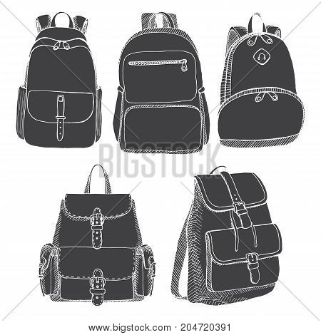 Set of different backpacks men women and unisex. Backpacks isolated on white background. Vector illustration in sketch style.