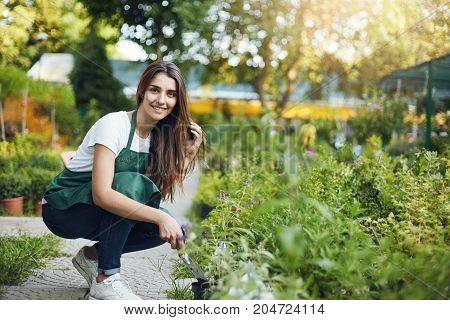 Posh female gardener assistant taking care of plants in an outdoor greenery shop.