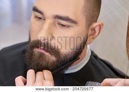 Beard grooming close up. Hand of female barber, comb.