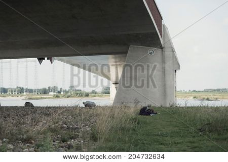 Rambler Sleeps In Grass Under Modern Bridge Near River.