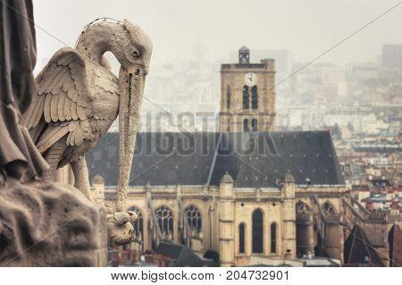 View from Tower of Cathedrale Notre-Dame de Paris on St-Gervais-et-St-Protais Church of Paris. Statue of stork. France