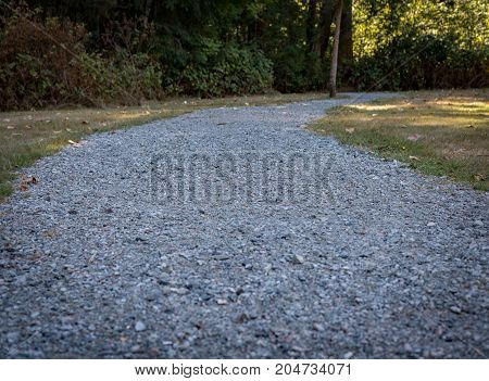 Gravel path in late summer leading to a forest
