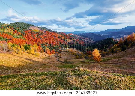 Beautiful autumn landscape with the green fair trees old hut orange coloured forest high mountains and blue sky. Autumn village scene