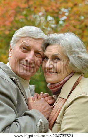 portrait of beautiful caucasian senior couple posing   in the park