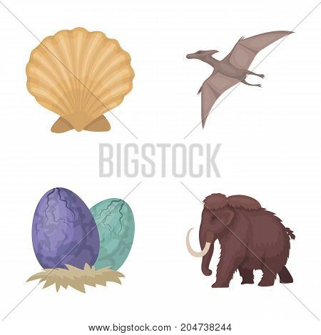 Prehistoric shell, dinosaur eggs, pterodactyl, mammoth. Dinosaur and prehistoric period set collection icons in cartoon style vector symbol stock illustration .