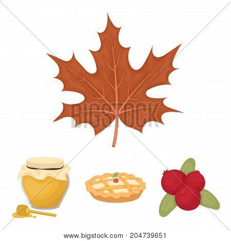 Cranberry, pumpkin pie, honey pot, maple leaf.Canada thanksgiving day set collection icons in cartoon style vector symbol stock illustration .