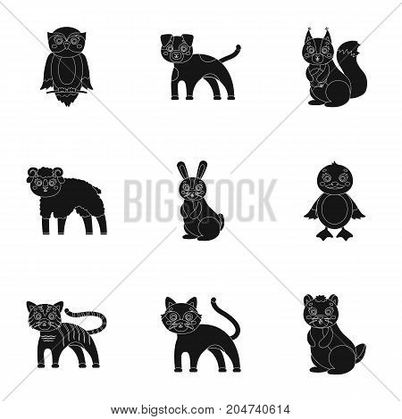 Nature, toys, farm, zoo and other  icon in black style.Kangaroo, marsupial, Australia, icons in set collection.