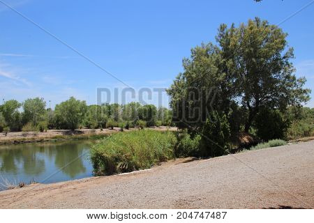 Beautiful landscape. Colorado River edge with green trees and plants on the sandy banks on a summer day and a clear blue sky.