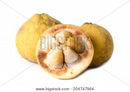 Ripe santol fruit on white background,Tropical fruit in Thailand