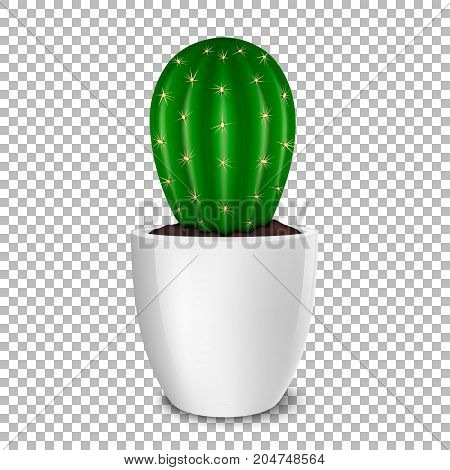 Realistic decorative cactus plant in white flower pot icon closeup isolated on transparent background. Design template, mockup. Stock vector. EPS10 illustration.