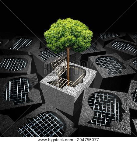 Unlock personal development psychology concept as an open cage shaped as a human head with a tree growing outside as a coming out symbol or freedom and imagination metaphor with 3D illustration elements.