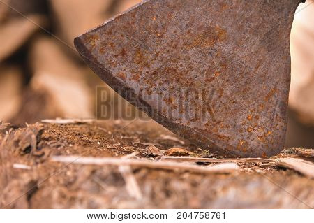 The blade of the Ax is stuck in a log against the background of chopped firewood lying in a flat pile. Close-up