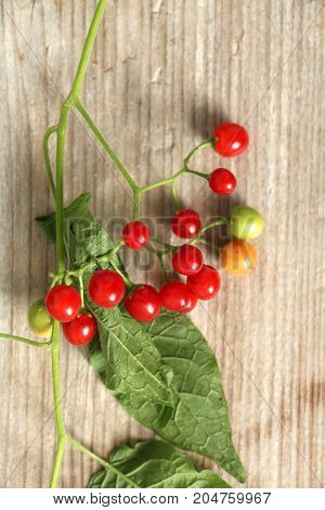 red currant on a wood background top view